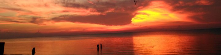 cropped-suns3.jpg